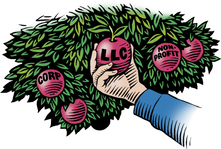 An illustration of a hand picking an apple from a tree that says LLC.