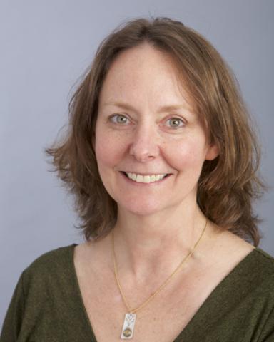Karen Henderson, Vermont Law School