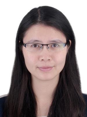 Yanmei Lin, Vermont Law School